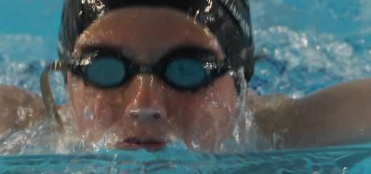 header_schwimmer_delphin